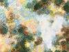 若冲の白いオウムの千の目